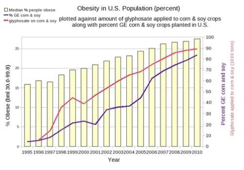 ObesityGMOs