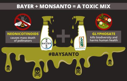 baysanto-infographics-01